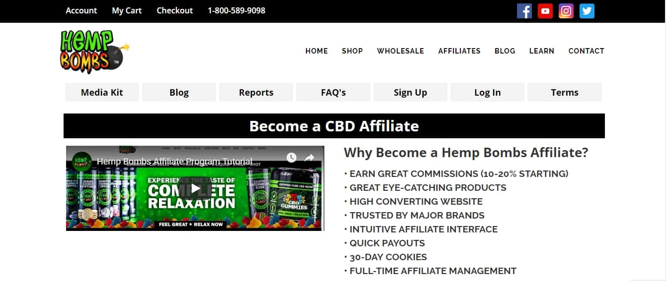 7 Profitable CBD Oil Affiliate Programs: Hemp Bombs