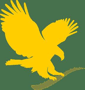 forever living eagle logo